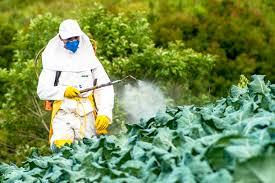 Governo Bolsonaro libera 51 agrotóxicos e totaliza 290 no ano